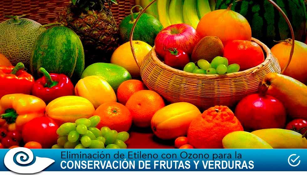 eliminación de etileno para la conservación de frutas y verduras usando ozonificación